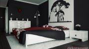 Siyah Beyaz Ev Dekorasyon Örnekleri, Fikirleri ve Resimleri